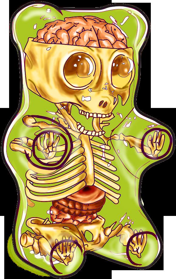 Gummy Bear Anatomy Por Rainonutopia Dibujando
