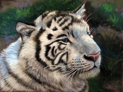 tigre_blanco_45848.jpg