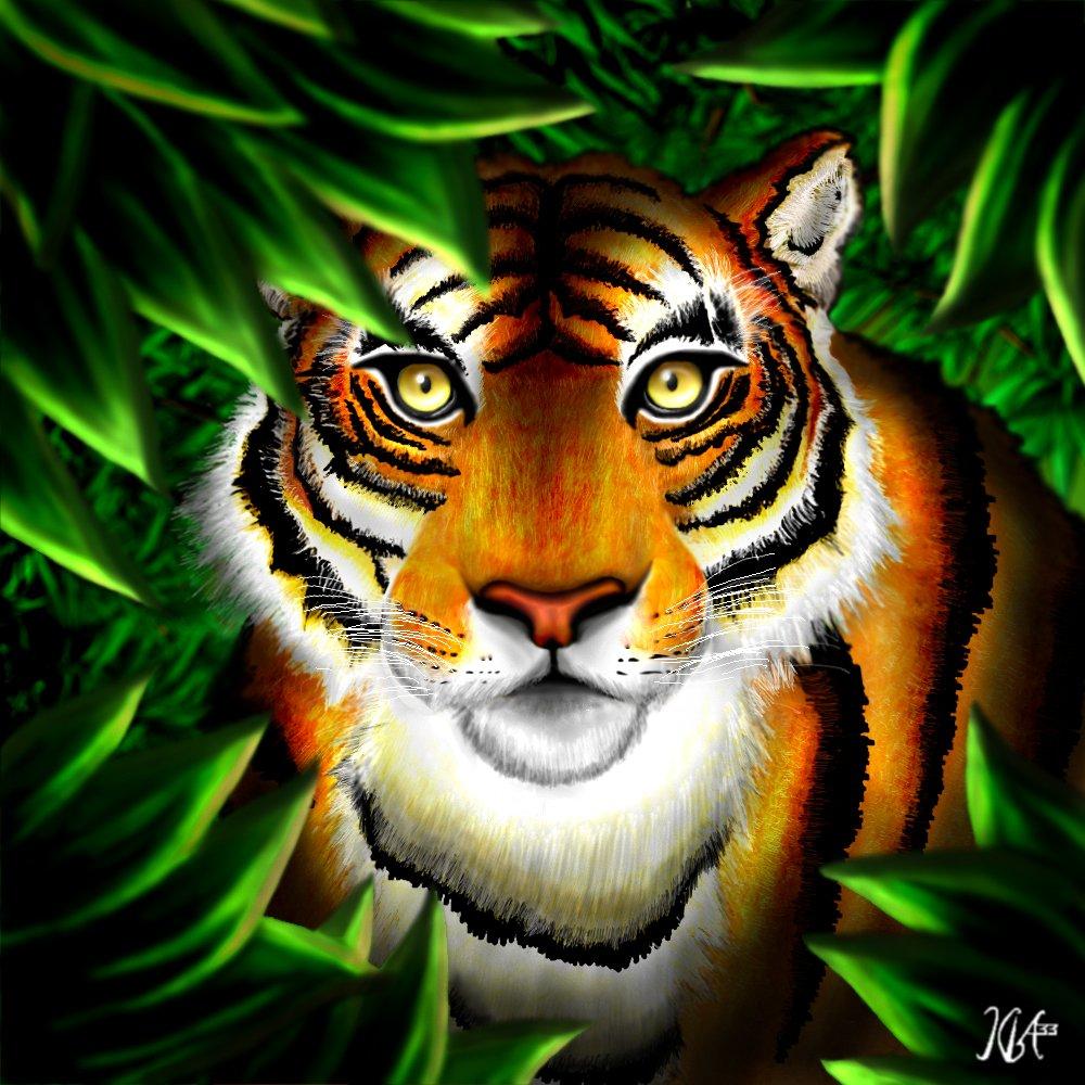 Tigre de Bengala por Kba33   Dibujando