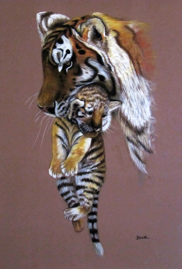 mama_tigre_65336.jpg