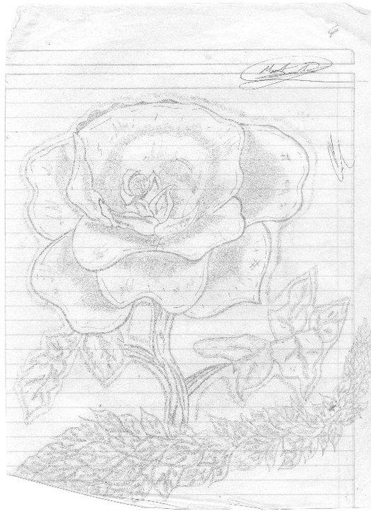 rosa_para_una_nina_66032.jpg