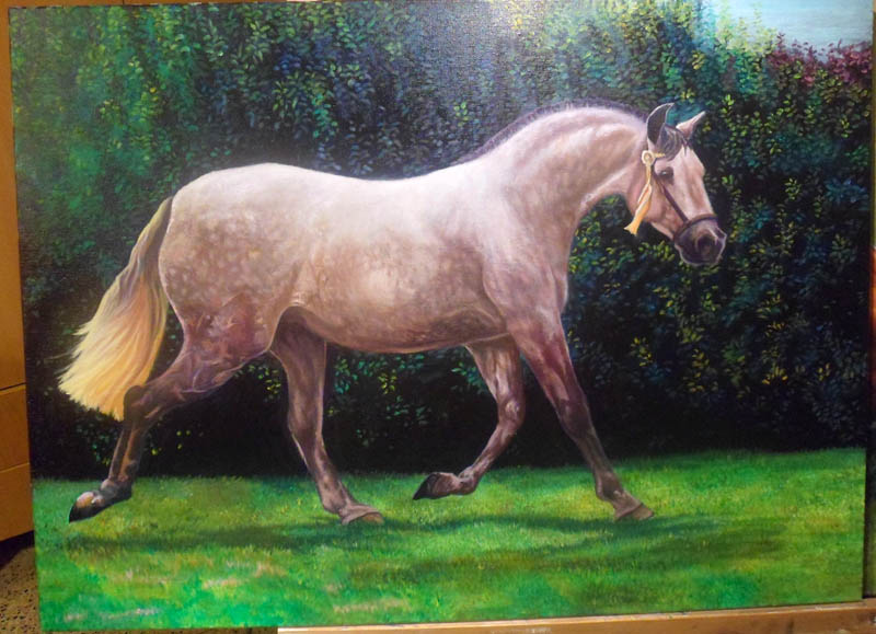 caballo_al_oleo_50054.jpg