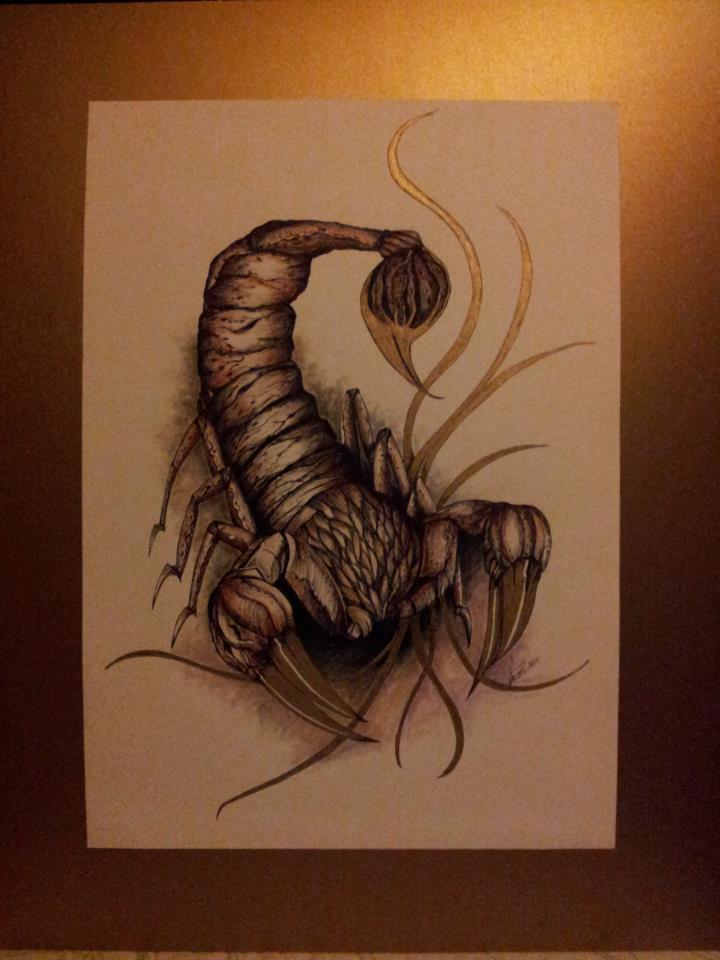 escorpion_51622.jpg