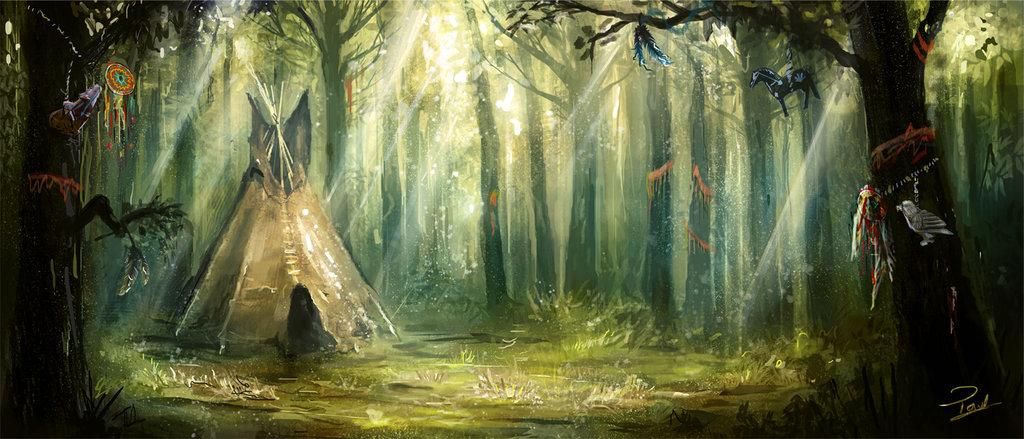 bosque_51860.jpg