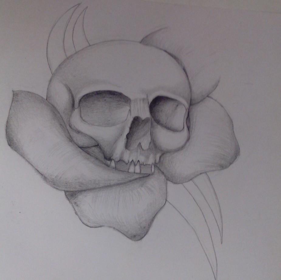 skull_and_rose_79351.jpg