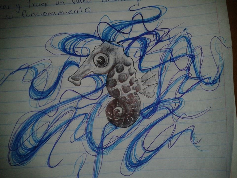 hippocampo_azul_81277.jpg