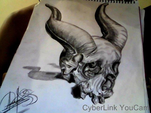 skull_81467.JPG