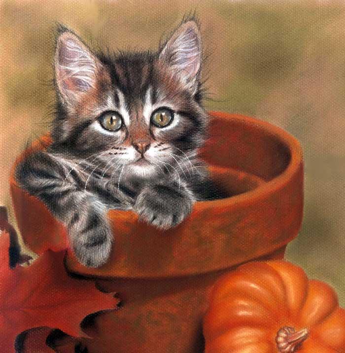 un_gato_tremendo_84340.jpg