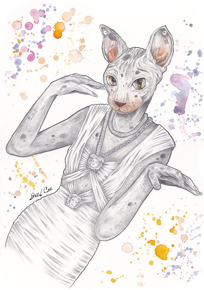 cat_210004.jpg