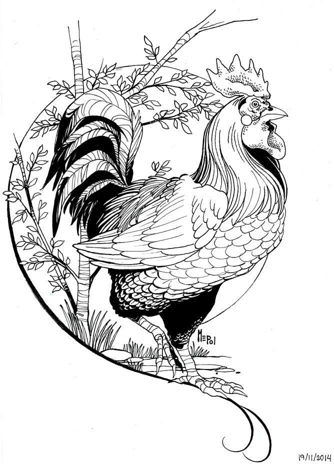 gallo_domestico_diseno_tatuaje_mepol_ilustraciones_299881.jpg