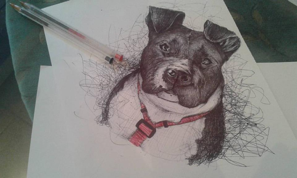 dog_314107.jpg