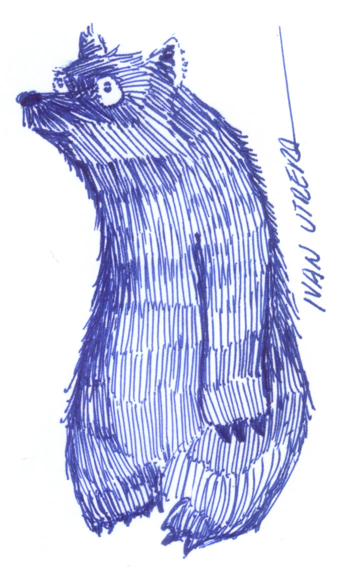 bear06_329422.jpg