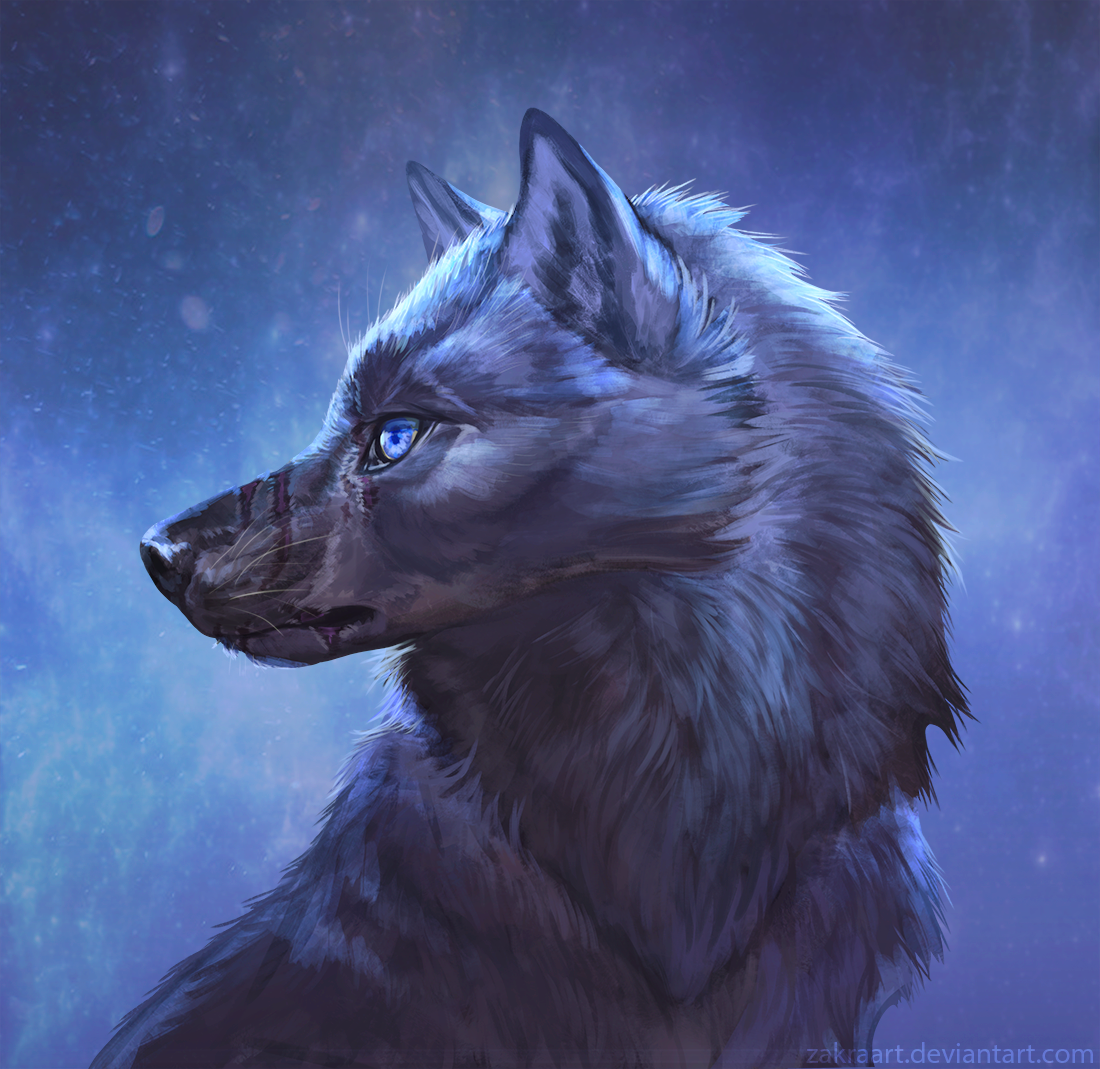 BlackWolf_330972.png