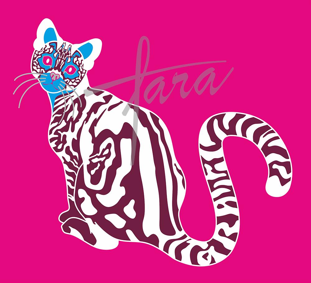 gato_lineas___corel_310827.png