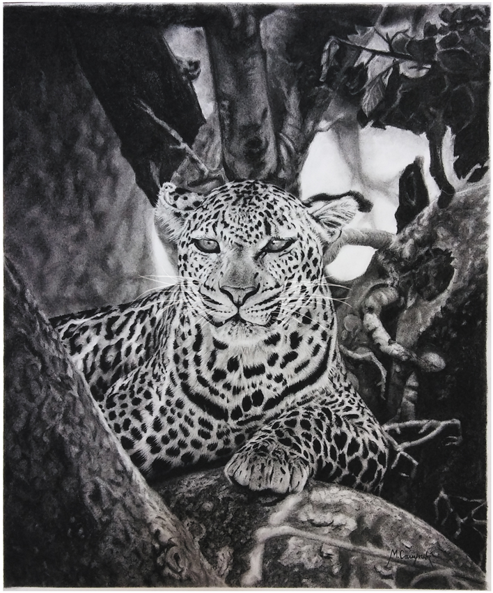 Leopardo_para_subir_357223.jpg