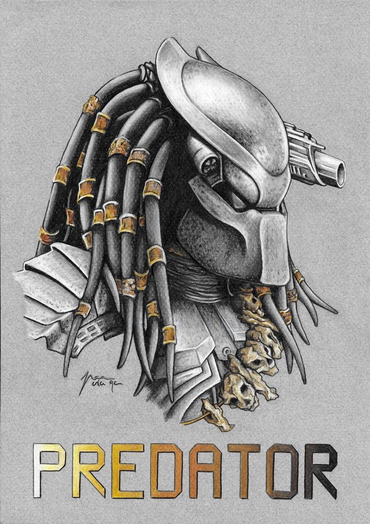 web2_Predator_345024.jpg