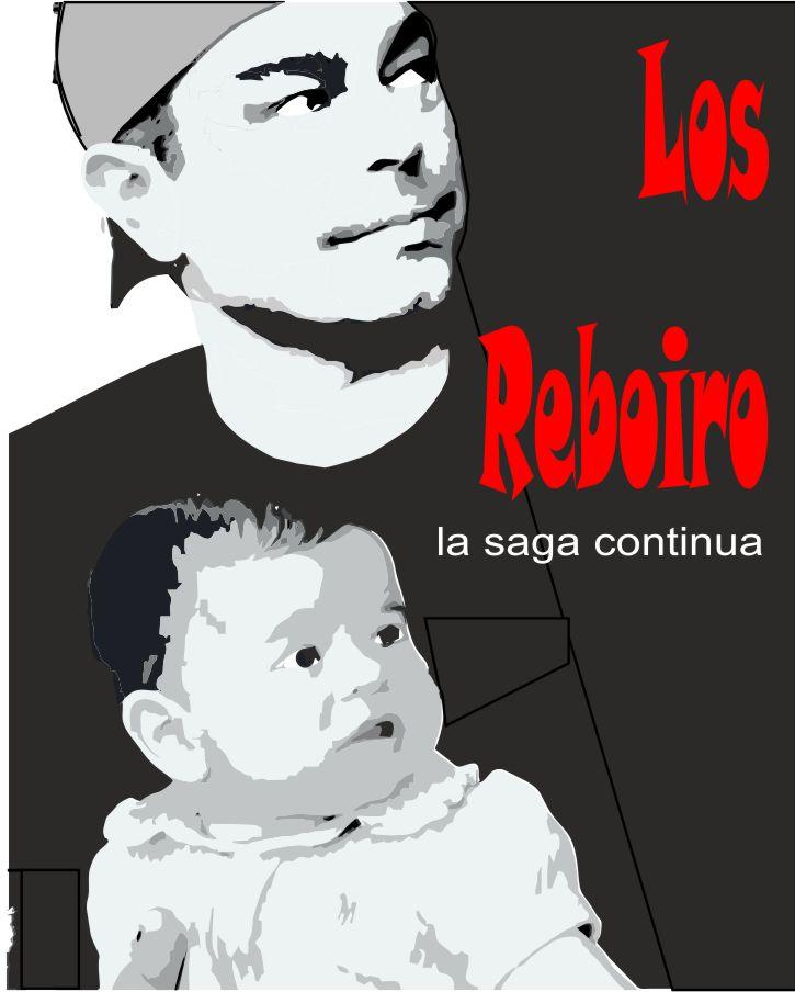 PROYECTO_REBOIRO_380371.jpg