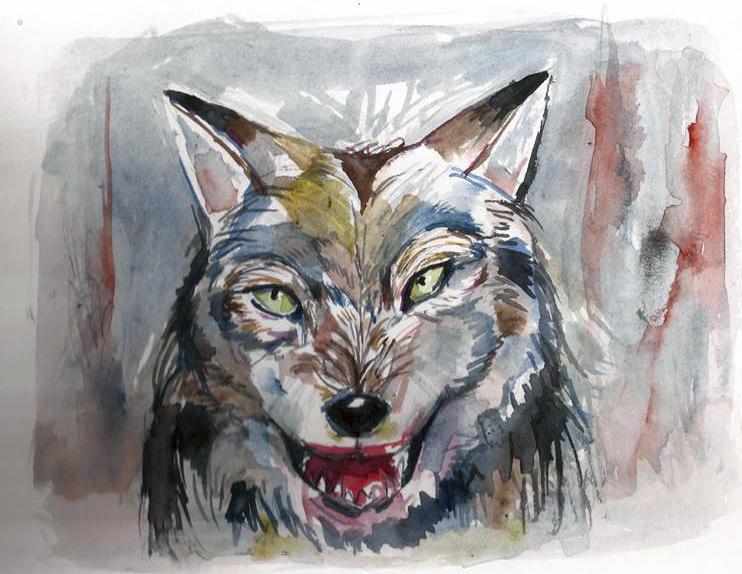 wolf_350601.jpg