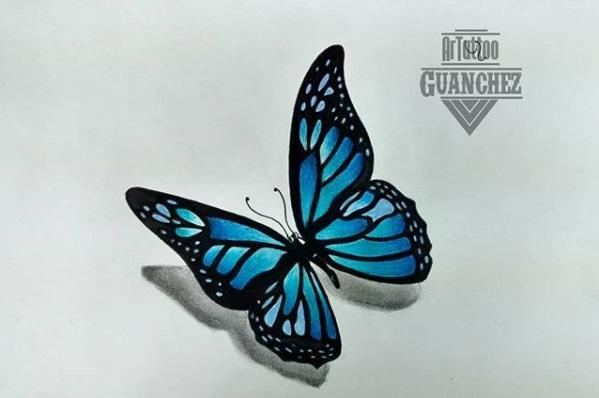 mariposa_392022.jpg