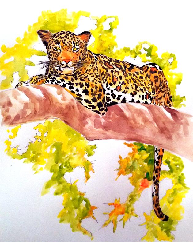 leopardo_kabron_393446.jpg