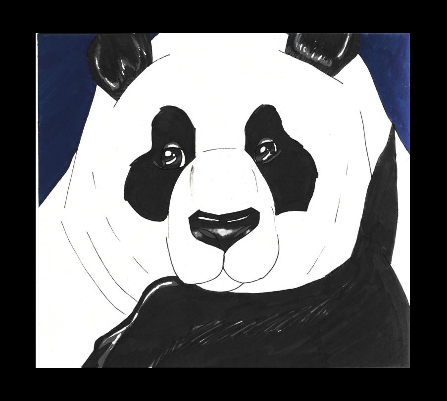 pandavector_418846.png