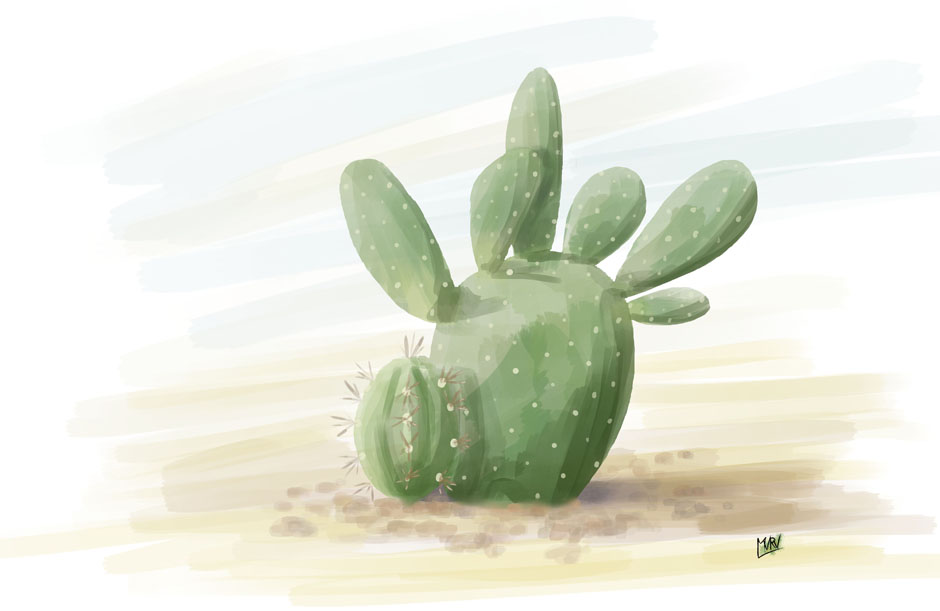 Cactus_419541.jpg
