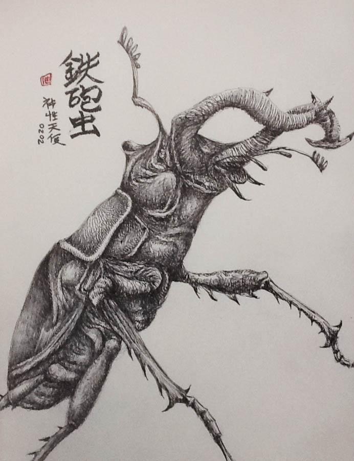escarabajo_452534.jpg
