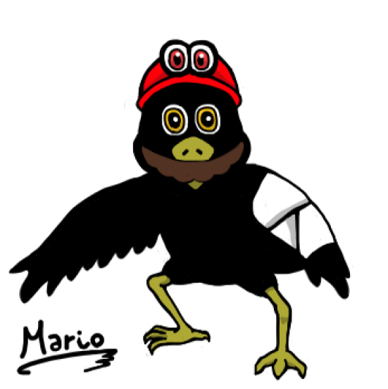 crow_odyssey_463179.png